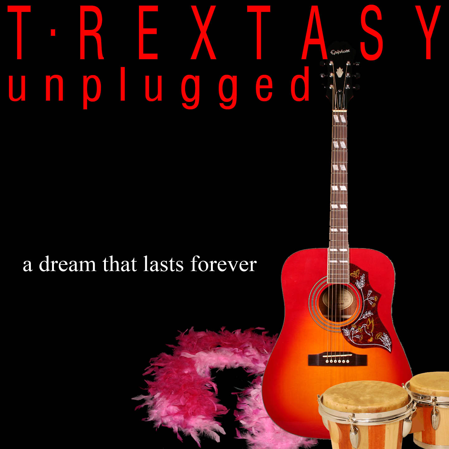 T.rextasy Unplugged
